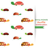 Vector background with turtles. Stock Photography