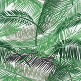 Vector background with two layers of tropical foliage. Palm leaves pattern. Seamless vector pattern for print design, wallpaper, s royalty free stock images