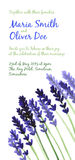 Vector background with violet watercolor lavender Stock Images