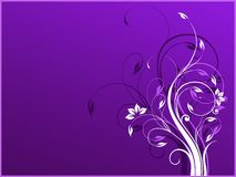 Vector background with violet and white colors and Stock Image