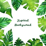Vector background with watercolor green leaves Stock Images