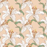 Pattern of the garden lilies. Vector background of the white garden lilies Royalty Free Stock Photography