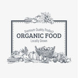 Vector Background With Hand Drawn Organic Food Stock Image