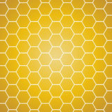 Vector background. Yellow and orange honeycomb. Stock Photos