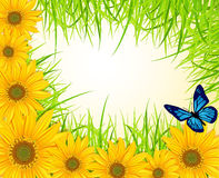 Vector background with yellow sunflowers vector illustration