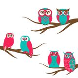 Vector backgrounds with couple of owls on the branch Stock Photography