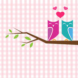 Vector backgrounds with couple of owls on the branch. Royalty Free Stock Photography