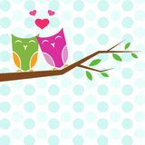 Vector backgrounds with couple of owls on the branch. Royalty Free Stock Image