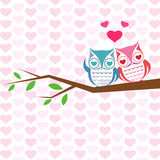 Vector backgrounds with couple of owls on the branch. Vector illustration Stock Photography