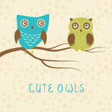 Vector backgrounds with couple of owls on the branch Stock Images