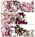 Vector Backgrounds Set With Orchid Flowers Royalty Free Stock Photography