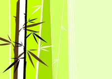 Vector bamboo. See my gallery for more Stock Photo