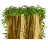 Vector Bamboo Fence with Palm Royalty Free Stock Photography