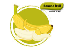 Vector Banana fruit isolated on color background,illustrator 10 eps Royalty Free Stock Photo