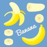 Vector banana stock photo