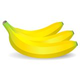Vector   bananas Royalty Free Stock Photos