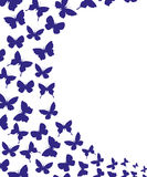 Vector banner. Butterflies. Royalty Free Stock Image