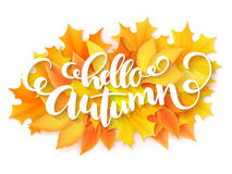 Vector banner with hand lettering label - hello autumn - on yellow autumn leaves background.  Stock Photo