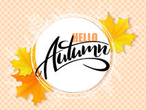 Vector banner with hand lettering label - hello autumn - yellow autumn maple leaves and flares.  Stock Photos