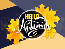 Vector banner with hand lettering label - hello autumn - yellow autumn maple leaves and flares.  royalty free illustration