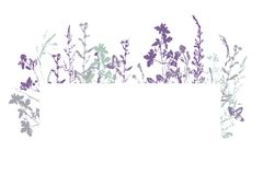 Vector banner with ink stamp of herbs Royalty Free Stock Image