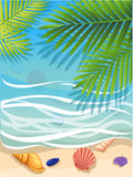 Vector a banner with an landscape beach. Top view of the island paradise.The tropical beach on the seashore for rest palm tree lea. Ves tropics . Maritime hotel Royalty Free Stock Photography