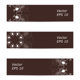 Vector banner of ornate brown. Vector banner of ornaments. Eps 10 Stock Photos