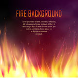 Vector banner with realistic fire. Vector banner with fire. Fiery banner design template. Realistic bright blazing campfire effect. Flaming bonfire illustration Royalty Free Stock Photos