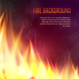 Vector banner with realistic fire. Vector banner with fire. Fiery banner design template. Realistic bright blazing campfire effect. Flaming bonfire illustration Royalty Free Stock Photo