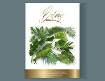 Vector banner with tropical leaves on white royalty free illustration