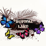 Vector banner on a tropical theme with palm leafs and tropical b Royalty Free Stock Photo