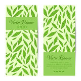 Vector banners, cards set. Green leaves pattern Royalty Free Stock Photography