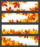 Vector banners with colorful autumn leaves. Eps-10. Stock Photos