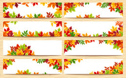 Vector banners with colorful autumn leaves. Royalty Free Stock Photo