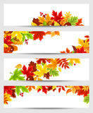 Vector banners with colorful autumn leaves. Set of four vector banners with colorful autumn leaves Royalty Free Stock Photography