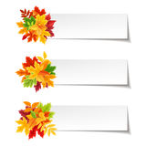 Vector banners with colorful autumn leaves. Royalty Free Stock Photos