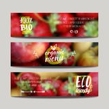 Vector banners design template with blur background with fruits. And strawberry. Healthy fresh food, vegeterian and eco concept. Can be used for presentation royalty free illustration