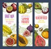 Vector banners of exotic fresh tropical fruits mix. Exotic and tropical fruits banners set. Vector mix or natural avocado, guava and carambola, fresh organic Royalty Free Stock Image