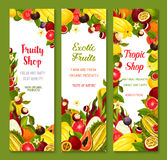 Vector banners with exotic fresh tropical fruits. Exotic fruits vector banners set of tropical guava or carambola, avocado and passionfruit, figs and juicy Stock Photography