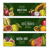 Vector banners of exotic fruits mix for menu Royalty Free Stock Images