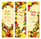 Vector banners of exotic fruits for tropical market. Exotic fruits banners for shop. Vector design of carambola, tropical durian or papaya and banana or kiwi Stock Image