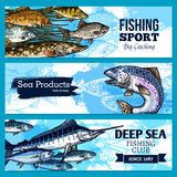 Vector banners of fishing club or sea fish product. Fishing sport and sea fish products vector sketch banners set. Fisher seafood catch of ocean fishes salmon or Stock Photo