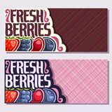 Vector banners for Fresh Berries. With copy space, strawberry, ripe blackberry, cherry berry, healthy blueberry in a row on geometric background, veg mix with Stock Images