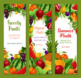 Vector banners with fresh tropical exotic fruits. Fruits vector banners set of farm fresh watermelon, sweet peach or apple and apricot, tropical pineapple and Royalty Free Stock Images