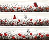 Vector banners met wilde bloemen en vlinders Stock Fotografie