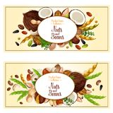Vector banners of nuts and fruit seeds. Nuts and fruit seeds or beans banners. Vector set of walnut, peanut or coconut and hazelnut, pistachio or almond nut Stock Photo