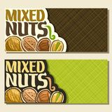 Vector banners for Nuts. With copy space, card with healthy walnut, sweet almond nut, forest hazelnut, pistachio in cracked nutshell in a row, veg mix label Stock Photography