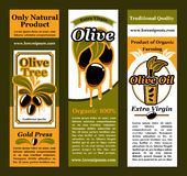 Vector banners for olives and olive oil product Royalty Free Stock Image