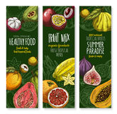 Vector banners set for exotic fresh fruits menu. Fresh exotic fruits banners for tropical fruit shop menu. Vector harvest of juicy orange pomelo, mangosteen or Royalty Free Stock Image