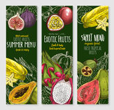 Vector banners set of exotic tropical fresh fruits Stock Image